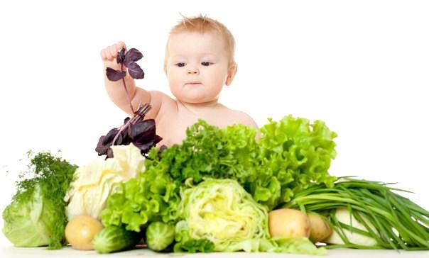 Zasady Zdrowego Żywienia w domu i żłobku